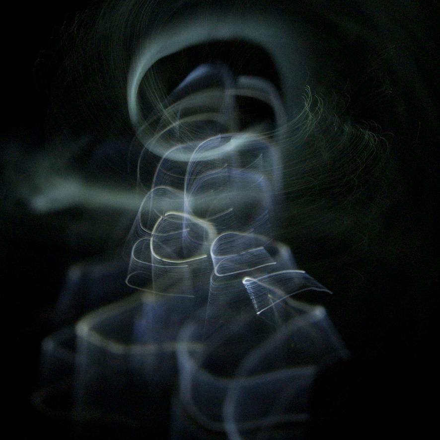 Ran Ancor - Dinamica luce 06
